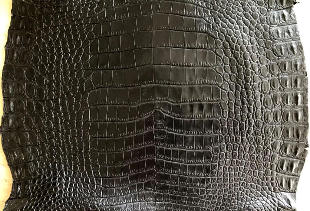 ラージクロコダイル革
