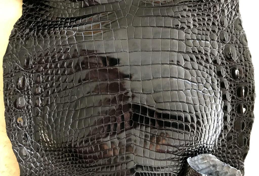 シャムクロコダイル革(シャムワニ)